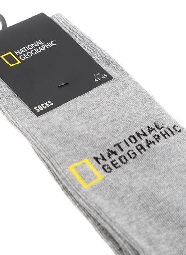 National Geographic Çorap Gri